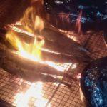 ~焚き火でサンマを焼いてます~