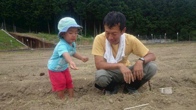 2016.6.4⑯大豆の種まき3