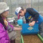 4.最後の仕上げは、撒いた種籾に覆土という掛け布団用の土を被せて籾蒔き完了♡