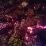鹿肉の炭火焼き