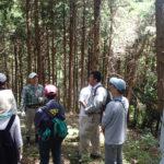 人工林の見学 (春期)