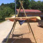 竹テント⁉