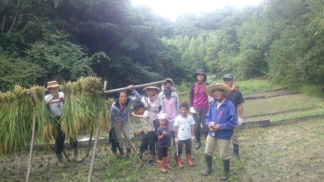 刈った稲は、はざかけにして、とっても幸せな一日でした。