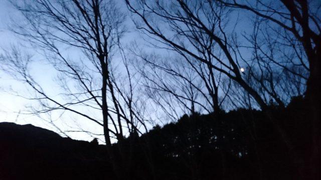 春の夜明け