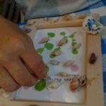 貝殻アート作り