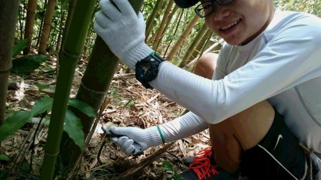 竹の伐採からスタート