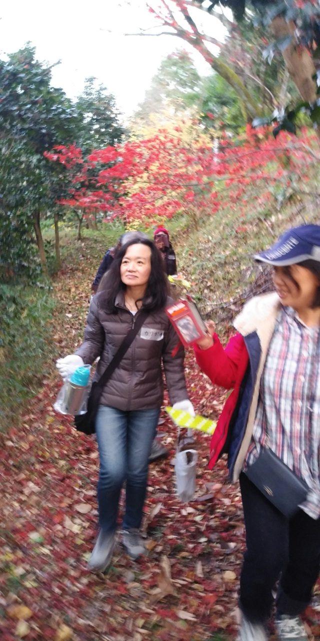 紅葉狩り小道