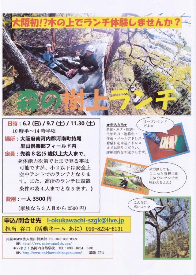 森の樹上ランチ2