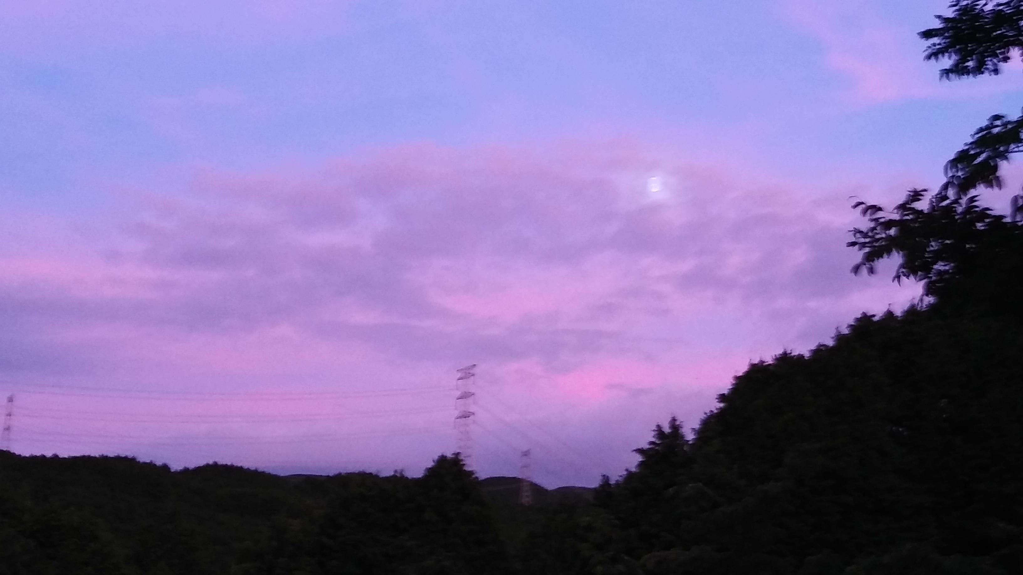 ~里山の夕暮れと月~