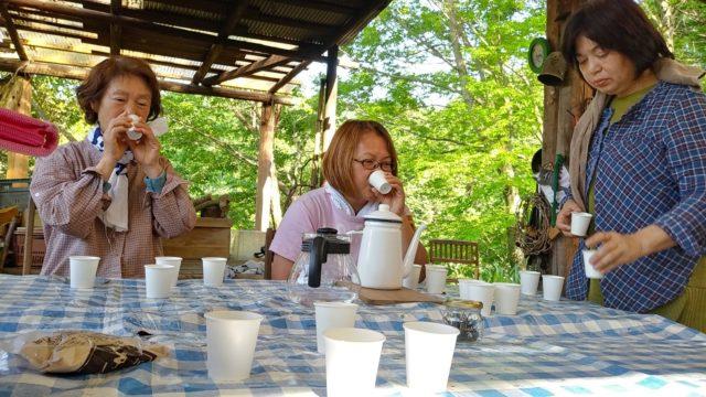 それぞれの手もみ茶を飲み比べ それぞれ全く異なる味わいです。