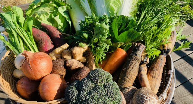1210野菜