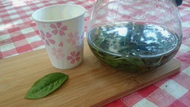 ~手作り新茶が入りました~